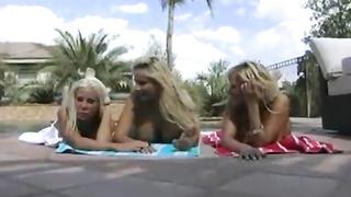 Brazzers - Big Dick Appetite (2008) Krystal Steal, Phoenix Marie, Shyla Stylez, Keiran Lee, Ramon