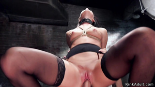 Sexy beauty in stockings bdsm banged