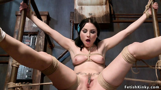 Gagged tied brunette pussy fucked