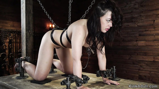 Chained in doggy position sub whipped