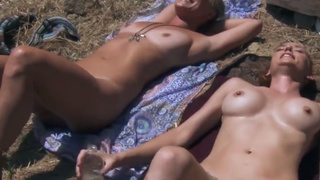 Hot cougars take a sunbath in the forest