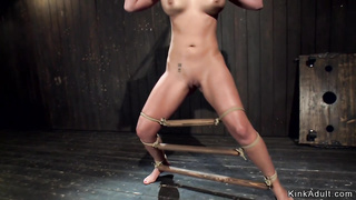 Babe in doggy device hot ass whipped