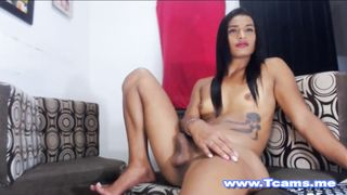 Hot Shemale got a Nice Handjob from her BF