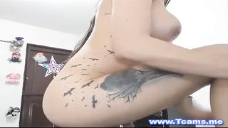 Horny shemale make herself satisfied live